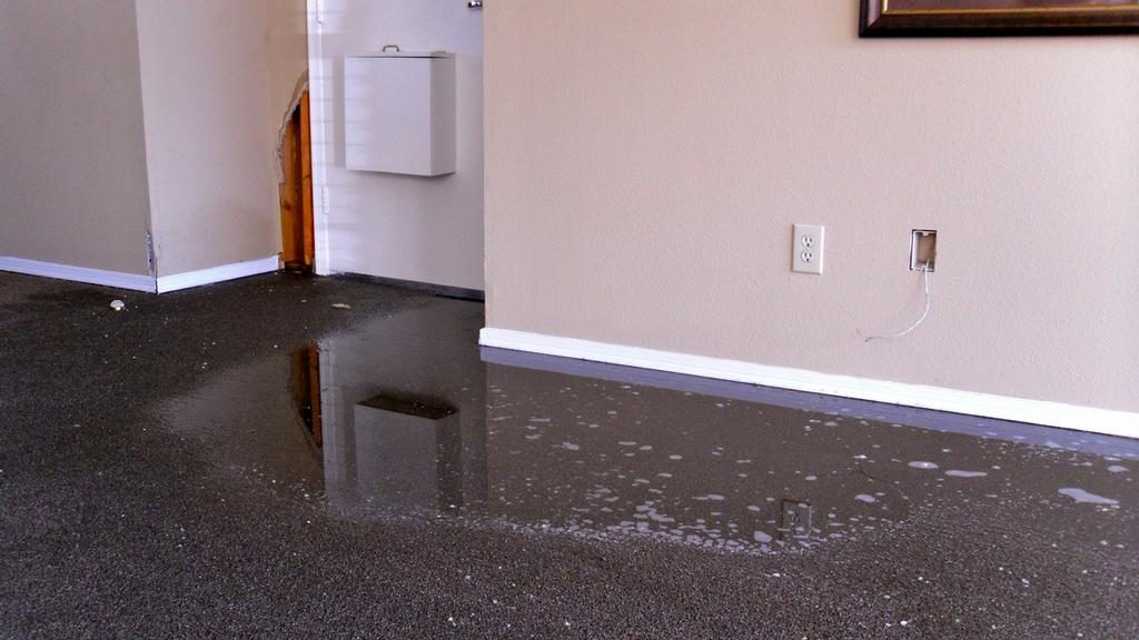 How To Repair Water Damaged Carpet Click To Learn More